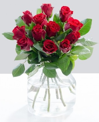 Debenhams Flowers roses roses