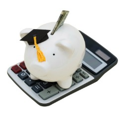 picture of piggy bank on calculator