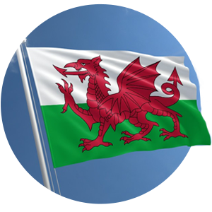 Welsh Flag image