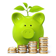 Green tax free ISA Piggybank growing your money