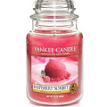 Half price Yankee Candle